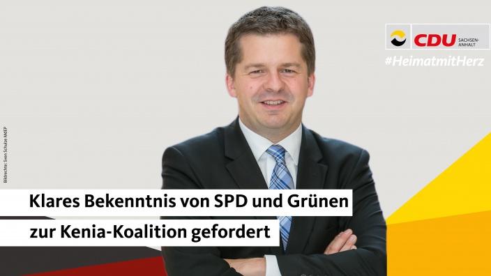 svenschulze_spdgruene.jpg